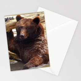 Majestic Large Grown Grizzly Bear Clinging Onto Fleetwood In Lake Ultra HD Stationery Cards