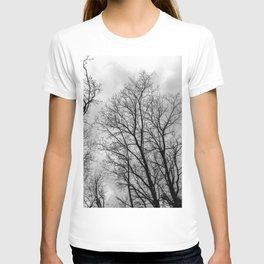 Creepy black and white trees T-shirt