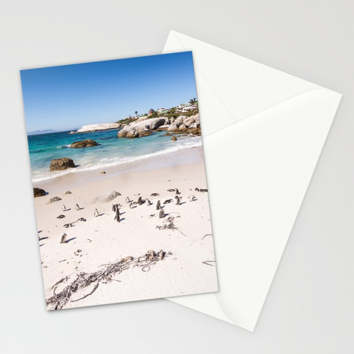 Penguins on Boulders Beach in Cape Town, South Africa Stationery Cards