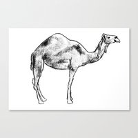 camel Canvas Prints featuring Camel by kMcLean