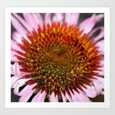 Floral Universe Art Print