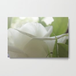 white and green flore Metal Print