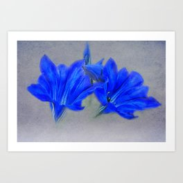 Painted Blue Gentians Floral Art Print