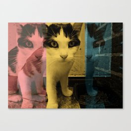 smokey. Canvas Print