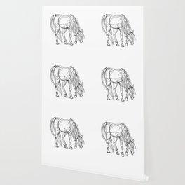 Little Line Horse Wallpaper