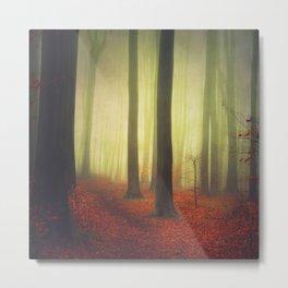 Magic Woodland Metal Print