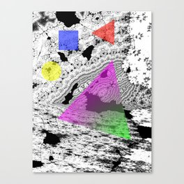gene II forms Canvas Print