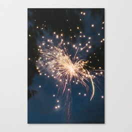 Firework 2 Canvas Print