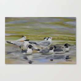 Shorebird Group Canvas Print