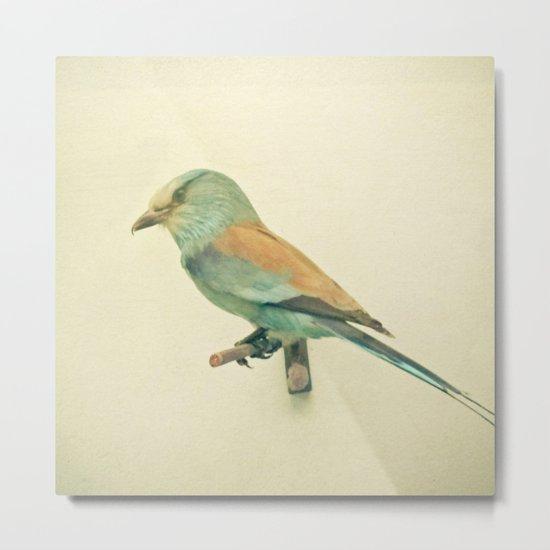 Bird Study #2 Metal Print