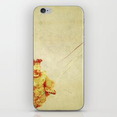 porcelain iPhone & iPod Skin
