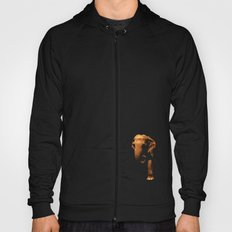 Elephant Emerging from the Dark Hoody