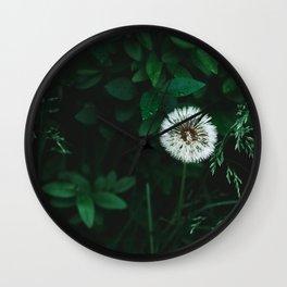 Wet Dandelion Wall Clock
