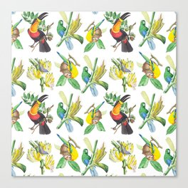 Birds #3 Canvas Print