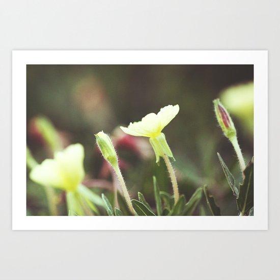 Gentle Landscape Art Print