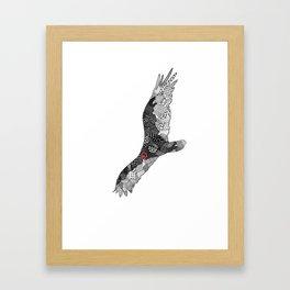 Turkey Vulture Framed Art Print