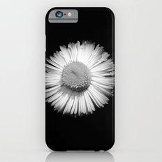 Fleabane B and W iPhone 6s Slim Case