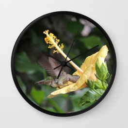 Hibiscus and Visitor Wall Clock