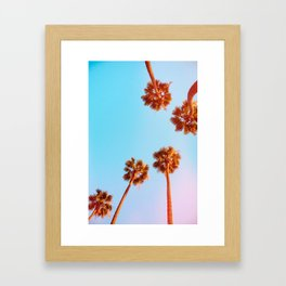 Evening Palms v1 Framed Art Print