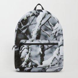 S N O W Backpack