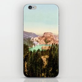 Forest mountains Lake Vintage Scenery iPhone Skin