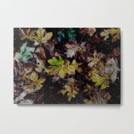 Autumn Patchwork, Maple Leaves Metal Print