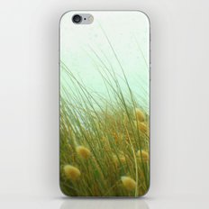 Whispers in the Breeze iPhone & iPod Skin