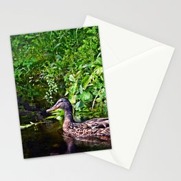 duck reflections Stationery Cards