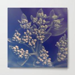 Floral Buds Metal Print