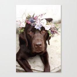 Flower Crown Beautiful Dog Portrait Canvas Print
