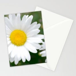 Daisies flowers in painting style 7 Stationery Cards