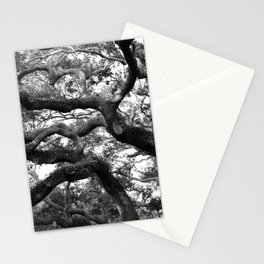 Live Oak Tree - black and white Stationery Cards