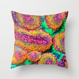 Rainbow Lobo (lobophyllia, Coral) Throw Pillow