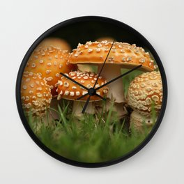 Amanita Colony... Wall Clock