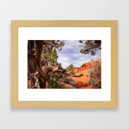 Unique desert beauty at Kodachrome Park in Utah Framed Art Print