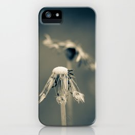 sweet wishes iPhone Case