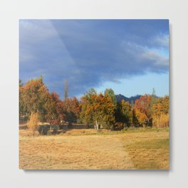 Ahhh the Fall colors Metal Print