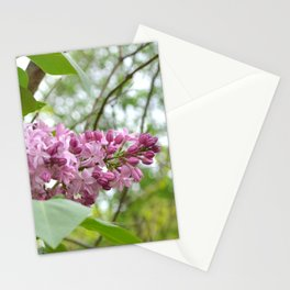 """""""Country Romance"""" Floral Photography, Nature Print Stationery Cards"""