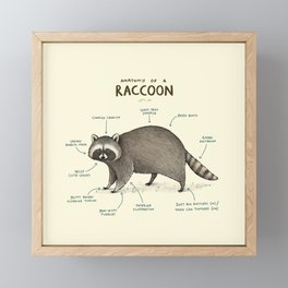 Anatomy of a Raccoon Framed Mini Art Print