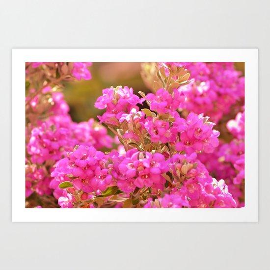 Pretty Pink Petals Art Print