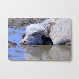 White Water Buffalo Bliss Metal Print