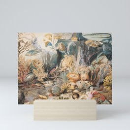 Ocean Life by James M. Sommerville Mini Art Print