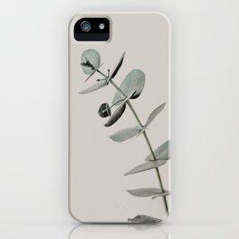 Stretch: minimalist botanical eucalyptus iPhone Case
