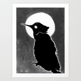 Avian night Art Print