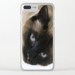 Siamese Soulful Expression Clear iPhone Case