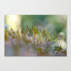 The MOSS 2 Canvas Print