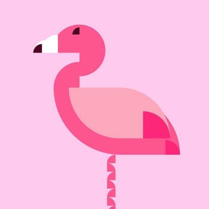 Geometric flamingo Duvet Cover