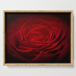 Deep Red Blood Rose On Black Serving Tray