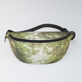 Touching Fanny Pack