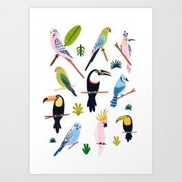 Birds of the Rainforest Art Print